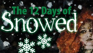 12 days of snowed book tour banner