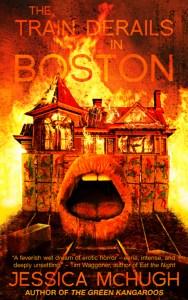 train derails in boston SJW genre cover