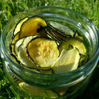 RAW DEHYDRATED COURGETTE CRISPS / CHIPS RECIPE