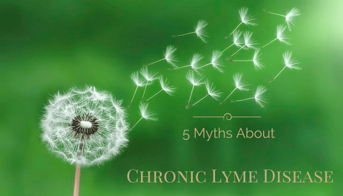 5 Myths About Chronic Lyme Disease