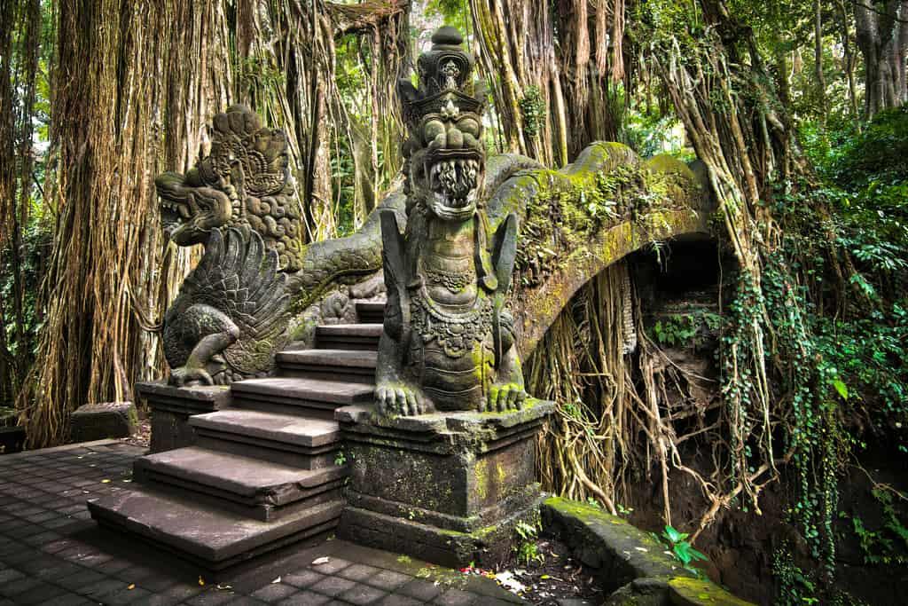 Ubud Monkey Forest, 10 days in Bali Itinerary