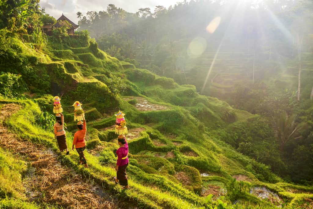 10 days in Bali Itinerary