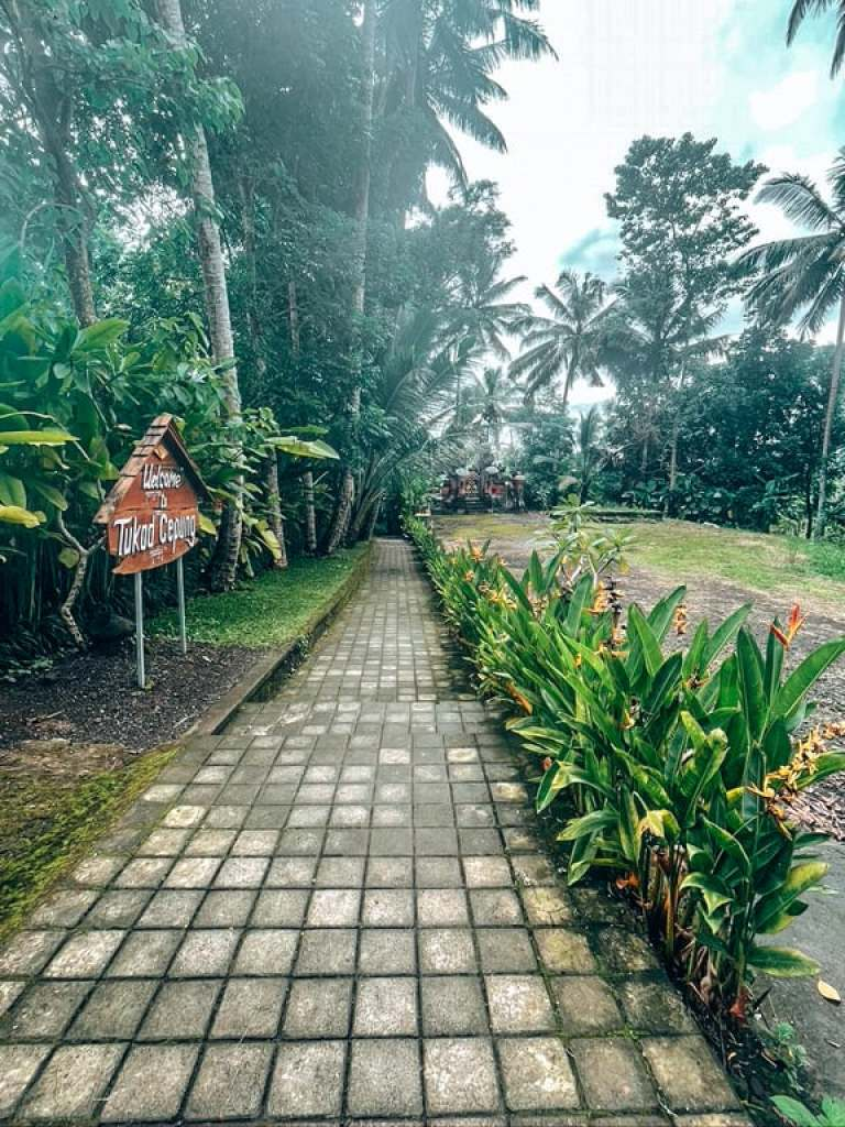 path to tukad cepung waterfall