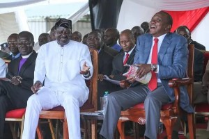 Instances Of Political Double Standards In ODM