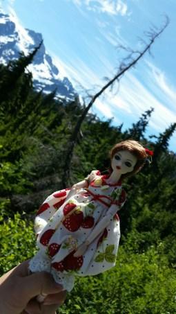 Sarafina in Washington at Mount Baker