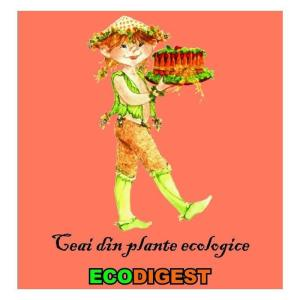 ceai-gastro-intestinal-ecodigest-bio-150g-1102-4.jpeg