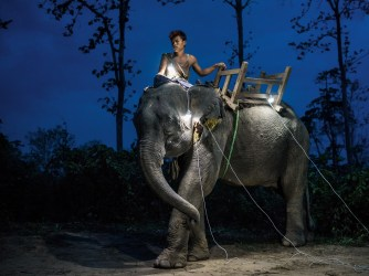 A worker at a logging camp in Myanmar's Bago region, where elephants have been used by loggers for centuries, sits atop his 11-year-old animal. Laborers in these camps have no electricity, so they use solar lanterns before sunrise. PHOTO: Nat Geo