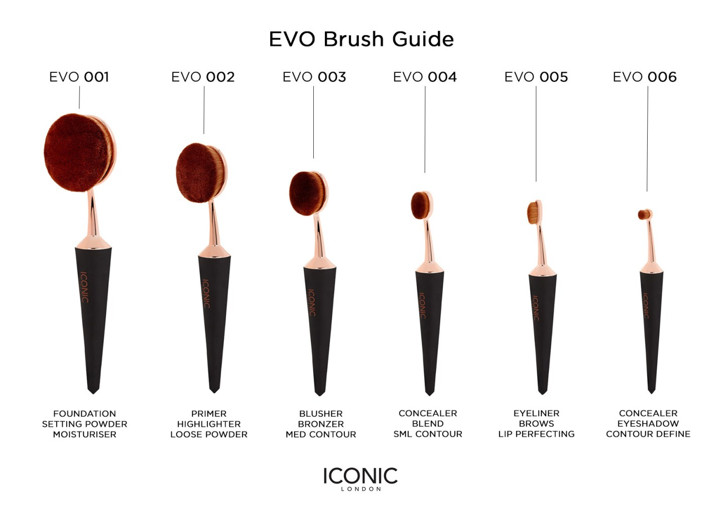 evo-brush-guide-raychel-says-iconic-london