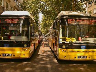 diyarbakirda martta transport gratuit pour les femmes