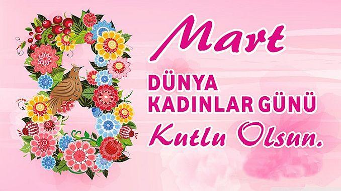 Onze moderne symbool van de vrouwen turkiyenin