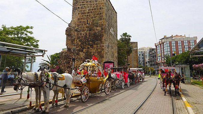 carriage ended in Antalya horses were delivered to the zoo
