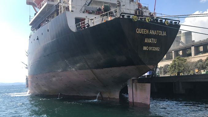 izmit korfezini polluted ship record penalty