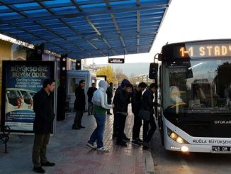 passenger transport of mugla population in big city and grass