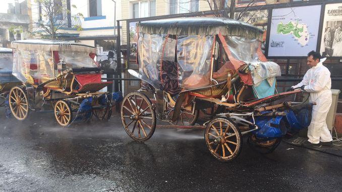 Istanbul orollari pheton chiqindilaridan xalos bo'ldi