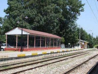 Rozmieszczenie platform na stacji Arifiye w wyniku przetargu