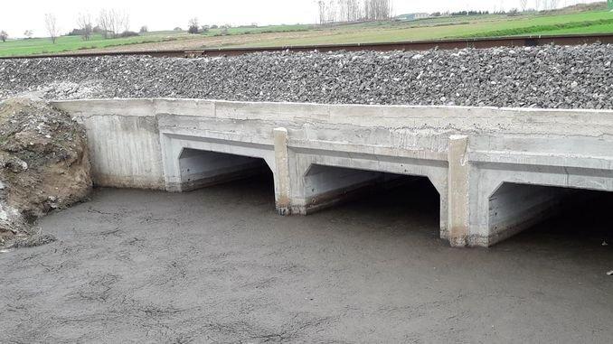 חיזוק גשר ההכרזות על מכרזים