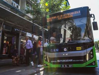 loyalty social support group will benefit from free public buses