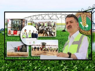 Ceylanpinar irrigation project, which will bring thousands of decares of water to water, is put into service