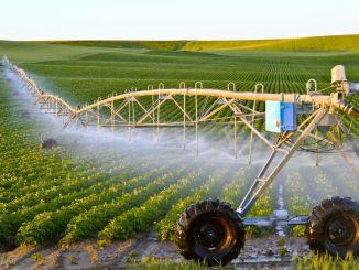 nou sprijin al agriculturii miliarde de lire pentru dezvoltarea rurală