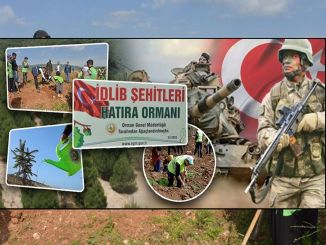 idlib sehts became a souvenir forest in the wooded area to be occupied in Mersin.