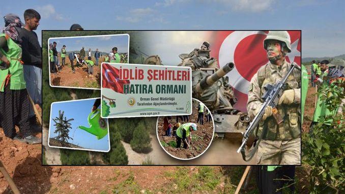 Το idlib sehts έγινε ένα αναμνηστικό δάσος στη δασώδη περιοχή που πρέπει να καταληφθεί στο Mersin.