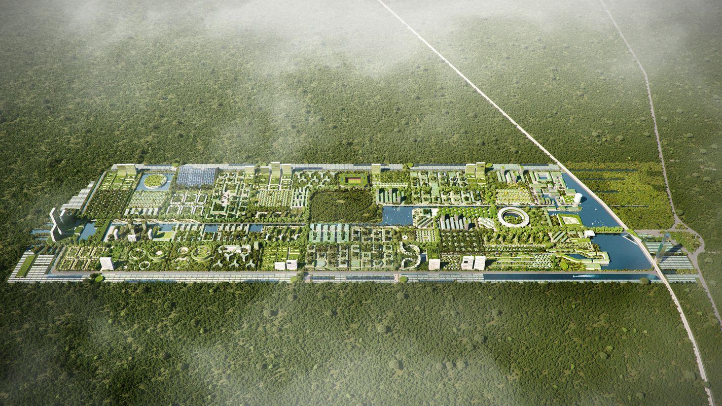 первый умный лесной город полностью автономного мира