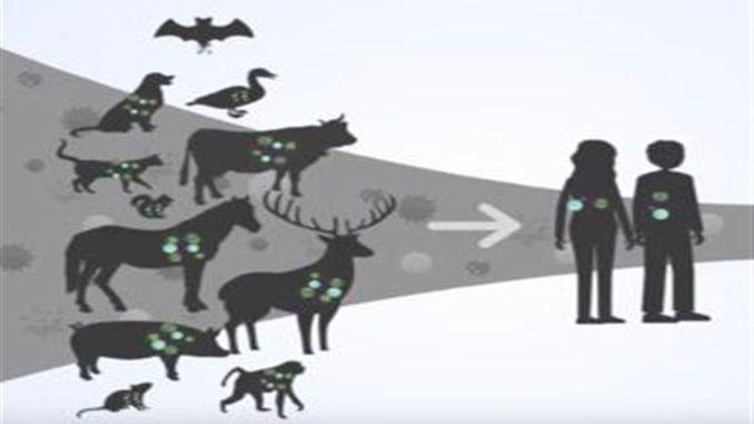 οι κυνηγοί ιών θα δημιουργήσουν τον χάρτη ιών του κόσμου
