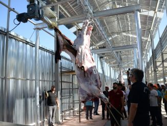 precautions to be taken in victim slaughtering and sales areas are determined
