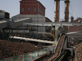 turkey sugar factories will make continuous isci scholar