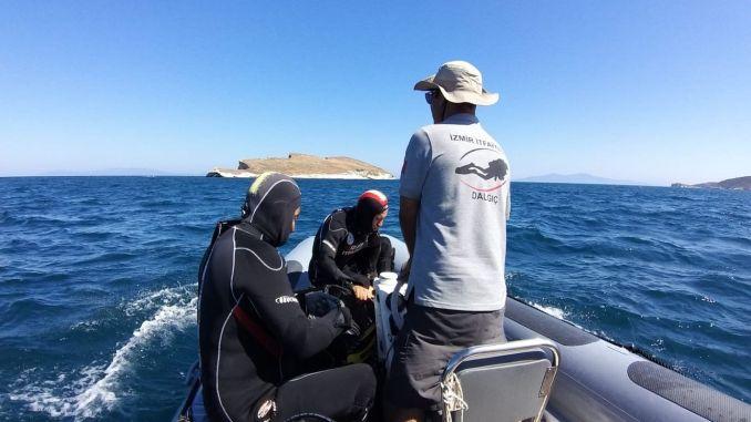 Sarp Goksoyu Search Activities