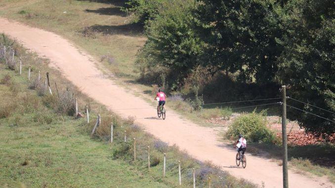 orienteering activities resumed
