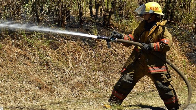 Muğla Metropolitan Municipality to Buy 70 Firefighters