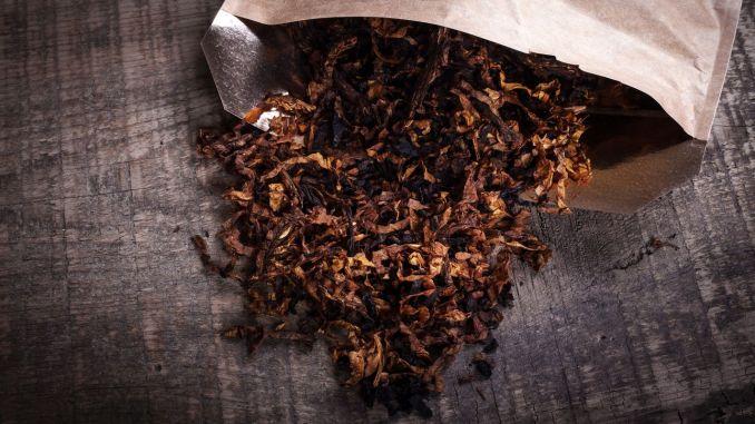 Tütün İxracatında 1 Milyard Dollar Hədəf