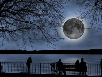 Moon Viewing Day