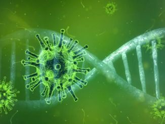 Welke test is hoe betrouwbaar in COVID-19? Wordt de coronavirus-test thuis uitgevoerd?