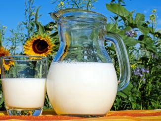 Wanneer gaan melksupplementen naar bed? Hoeveel is ondersteuning voor rauwe melk voor 2020?