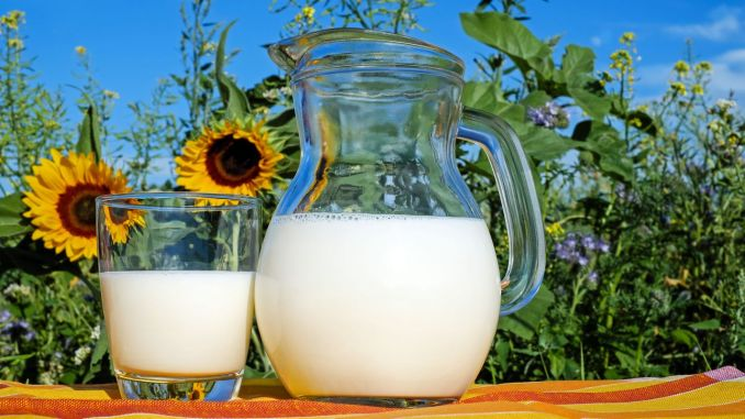 When Will Milk Supplements Go To Bed? How Much is Raw Milk Support for 2020?