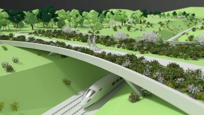 Making an ecological bridge for animal crossing on the Ankara eskisehir yht line
