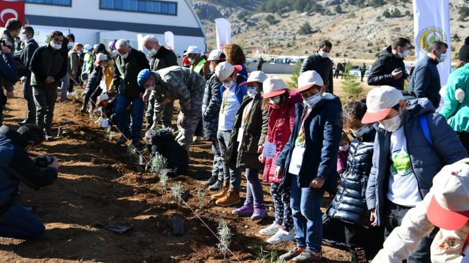 Over a thousand saplings met with the soil at Davraz Ski Center
