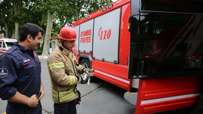 ibb firefighter will recruit