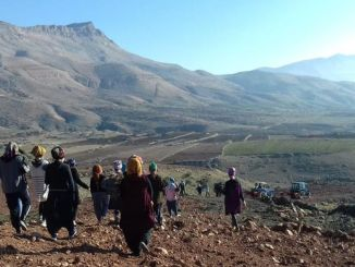 The project of women who produce a world increases women's employment in Mardin