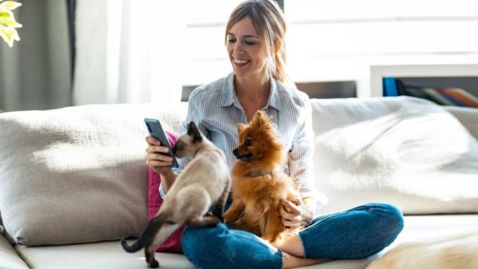 Personal life insurance for pets