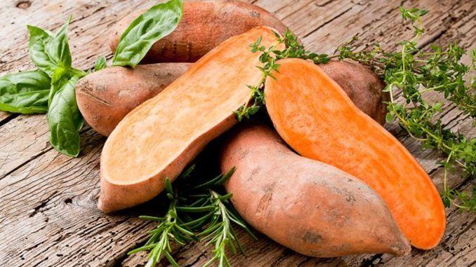 sweet potato miracle
