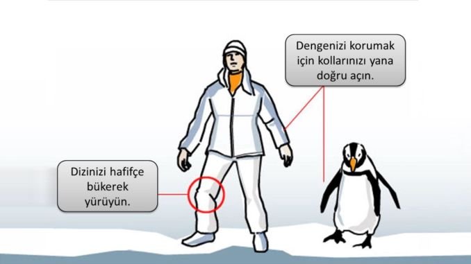 Walk like a penguin on ice and snow