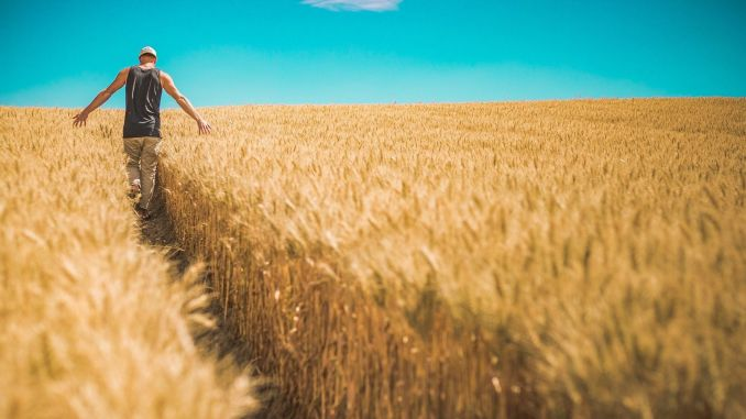 academics searched what farmers want