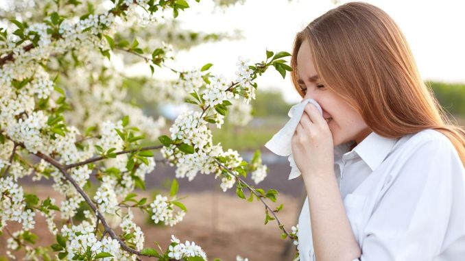 pollen allergy symptoms may start earlier this year