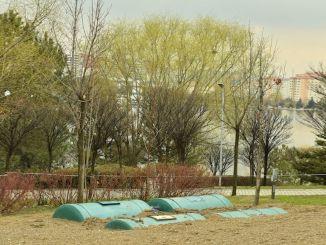 Ankaraya Regenwassertankparks werden mit Regenwasser bewässert