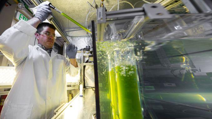 Treffen Sie Biolpg, den zukünftigen Kraftstoff, der aus Abfällen hergestellt wird