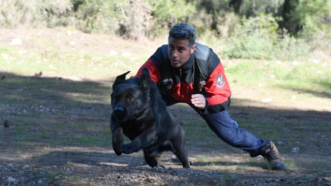 Seven search and rescue dogs of Izmir fire department are saving lives
