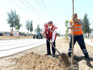 Antalya stage rail system guzergahi will smell orange blossom